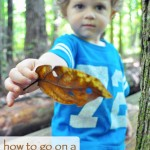 How to Go on a Nature Walk – Preschool Learning Activity