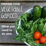 Planning a Vegetable Garden This Summer? What You Should Do Now