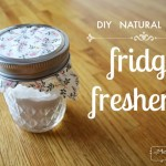 DIY Fridge Freshener – Natural and Easy!
