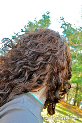 No-Poo - Natural Hair Care - How to Care for your hair without chemicals and shampoo