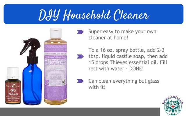 DIY Natural, Chemical-Free Household Cleaner Recipe