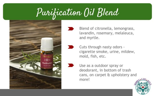Purification Essential Oil Blend is Great For Non-Toxic Household Cleaning!