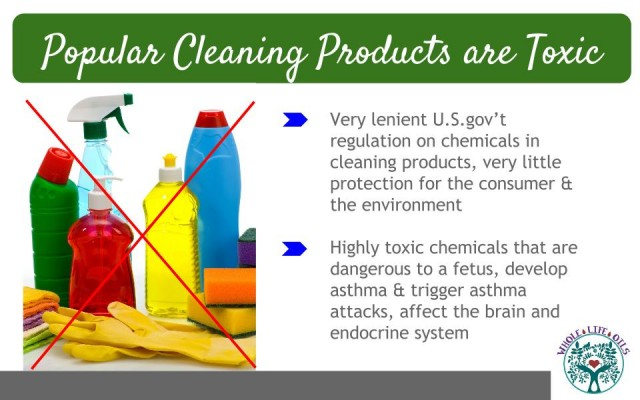 Popular Cleaning Products are Highly Toxic