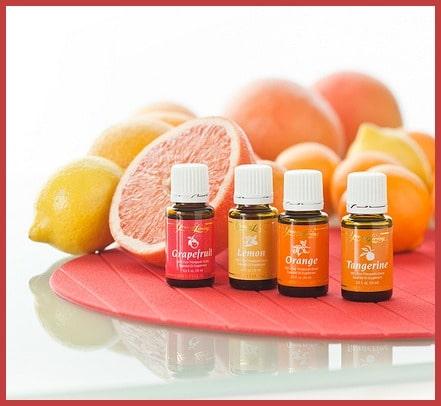 Young Living Citrus Essential Oils